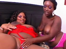 Hershey, Bonnie Blaze - lesbian, black, ass, toys, fat, licking, nipple sucking, natural tits, rimming